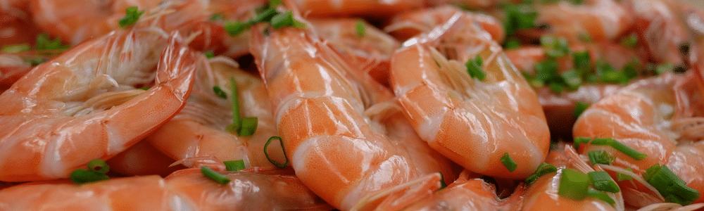 Ward's Guide to Florida Shrimp Ward's Supermarket Gainesville FL