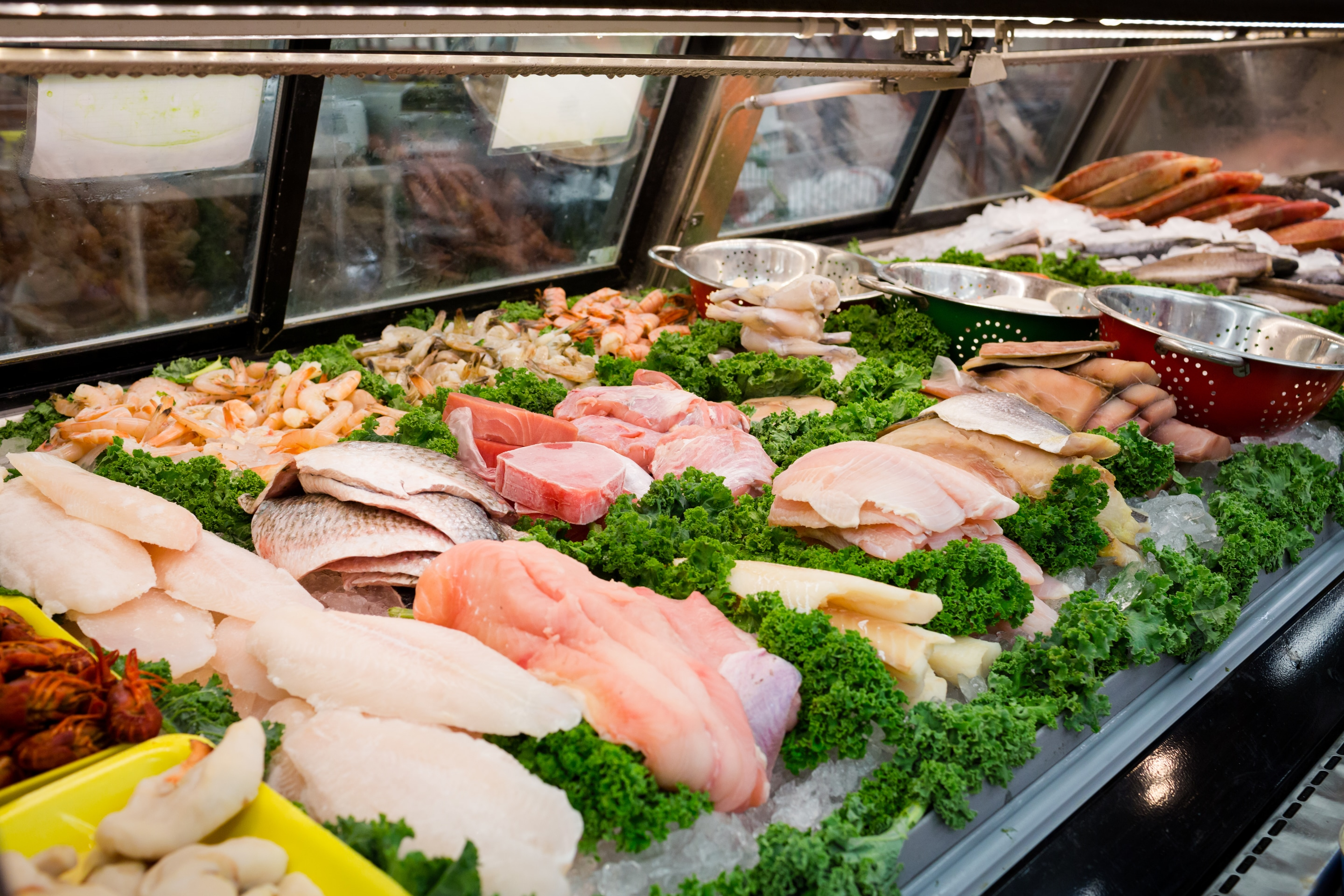 Ward's Seafood Department with Florida Shrimp Ward's Supermarket Gainesville FL
