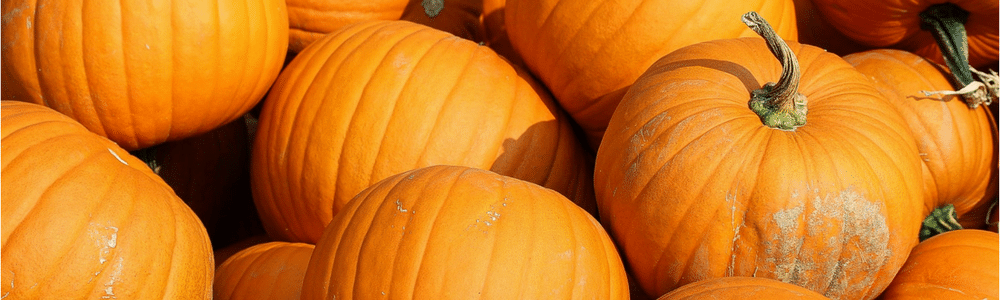 5 Surprising Ways to Use Pumpkins Wards Supermarket Gainesville FL