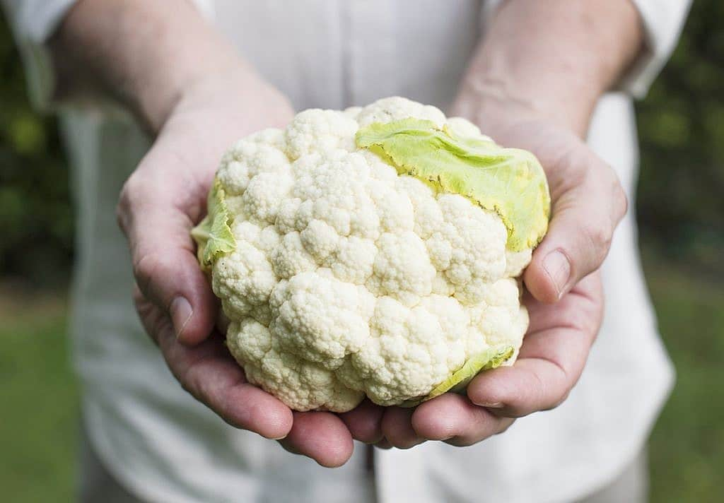 hands holding cauliflower